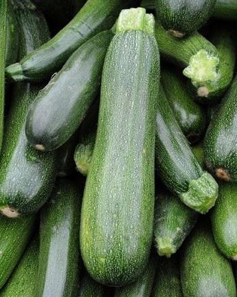 green%2Bmachine%2Bzucchini.jpg