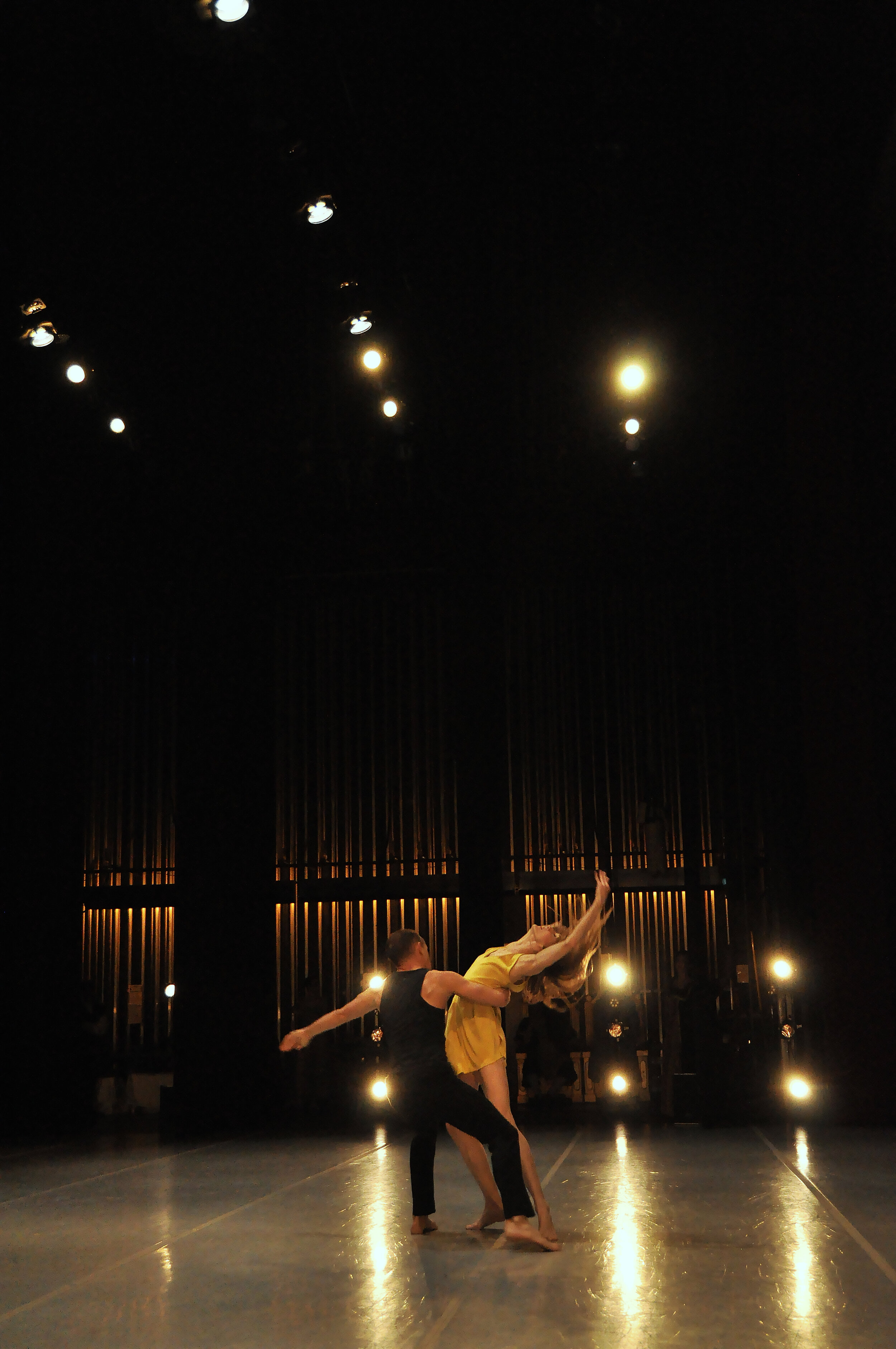 Chamberlain Ballet - Focal Pointe - Wendy Whelan and Brian Brooks in Restless Creature