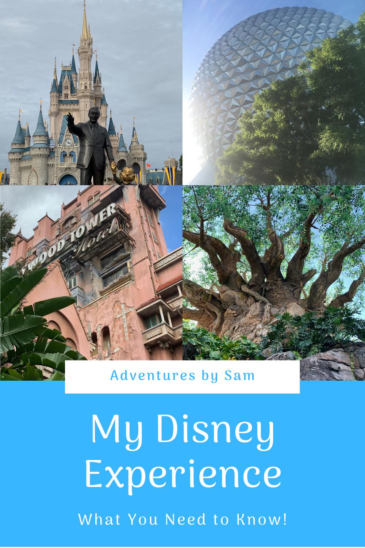 The Basics of My Disney Experience (Thumbnail)