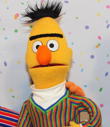 BERT is the algo, BURT is the Muppet.