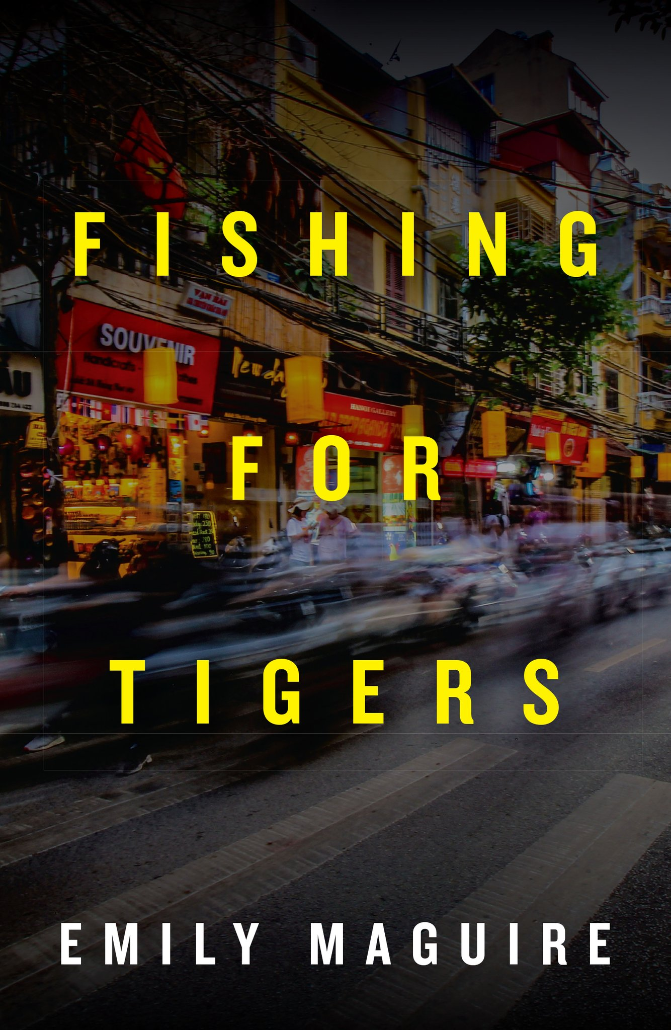"""- """"In Fishing for Tigers Emily Maguire presents an accomplished narrative voice, fascinating characters, and a developed cultural backdrop to a nuanced emotional and sexual drama."""" Bookseller & Publisher"""