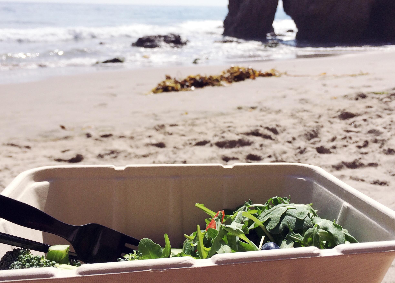 Salatbarene i LA er helt fantastiske, er ikke noe de ikke har!