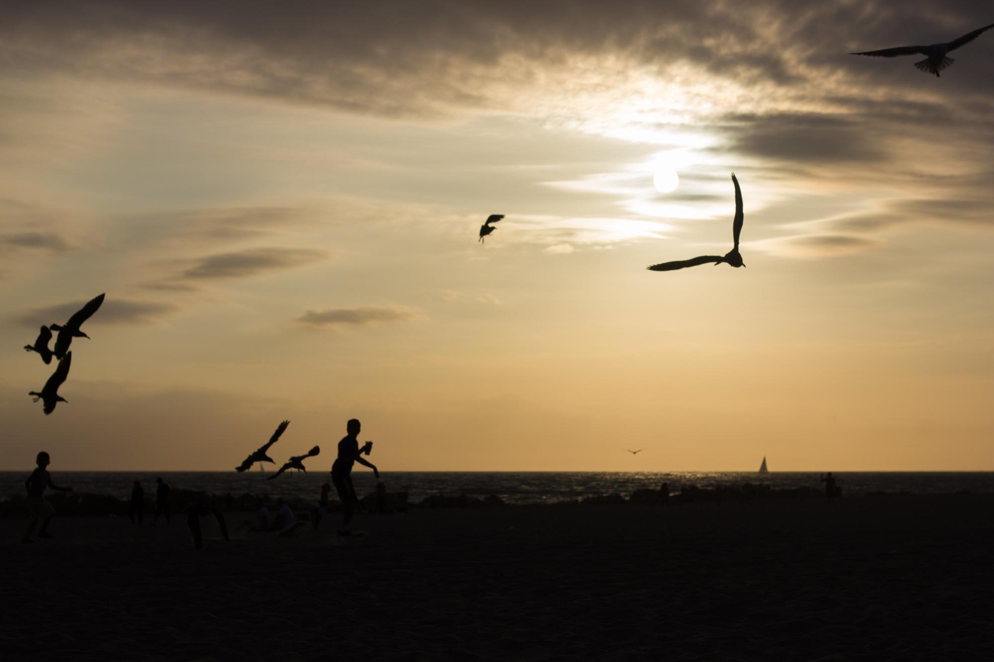 Fikk tatt fine bilder på stranden før solen gikk ned
