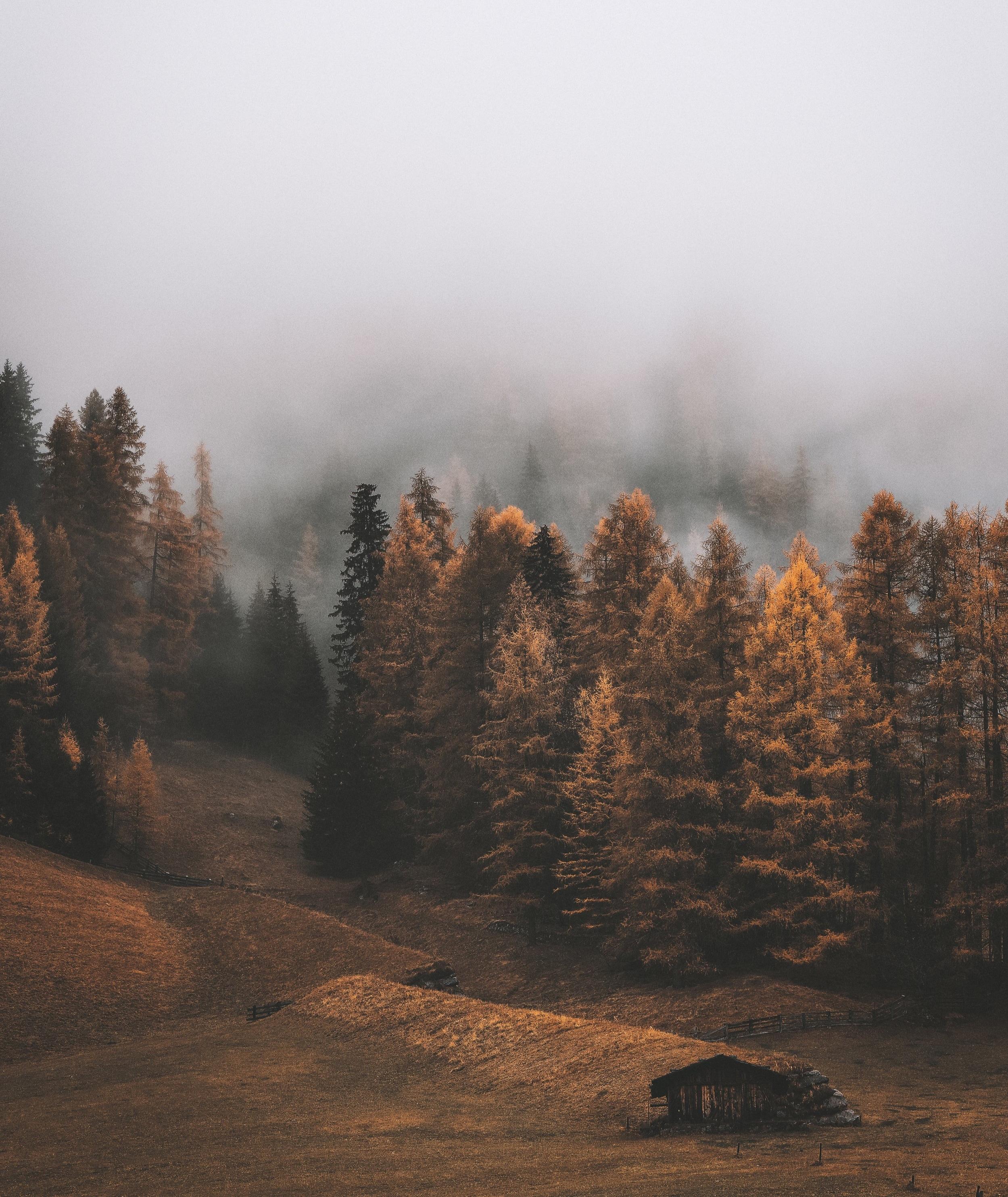 4k-wallpaper-autumn-clouds-2310641.jpg
