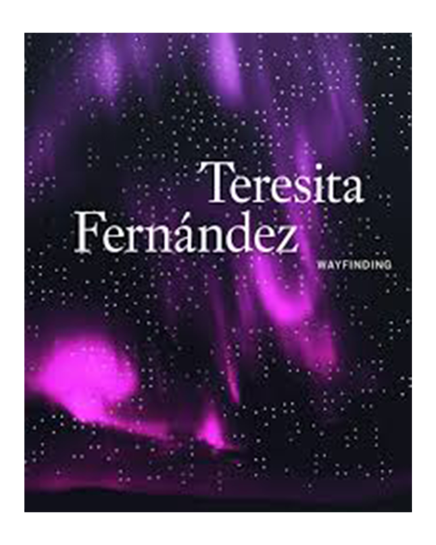 Teresita Fernandez     Essay