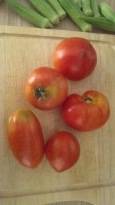 Ugly Maters from the Garden