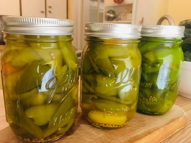Pickled Yellow Spice Jalapenos