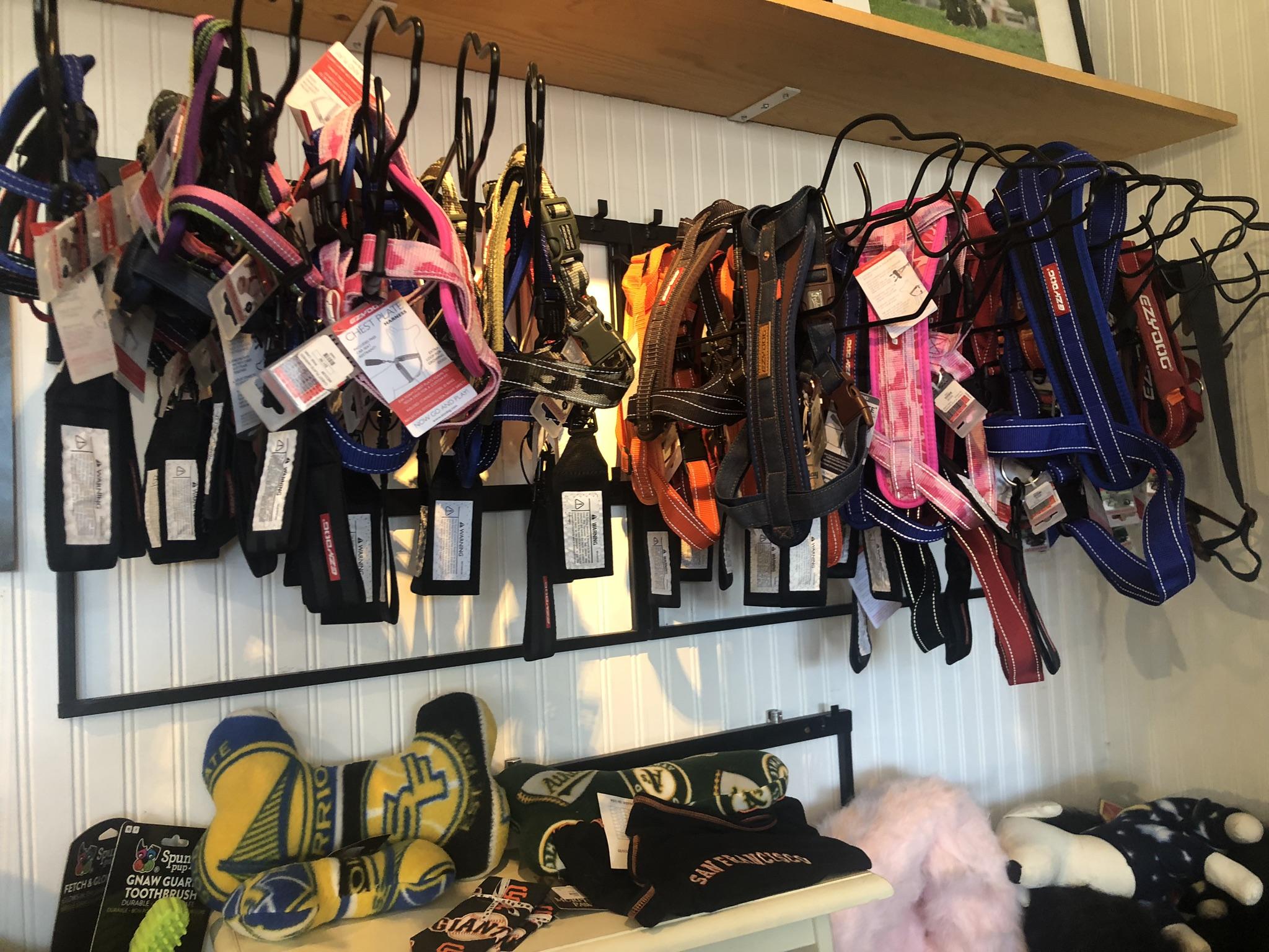 Designer Harnesses