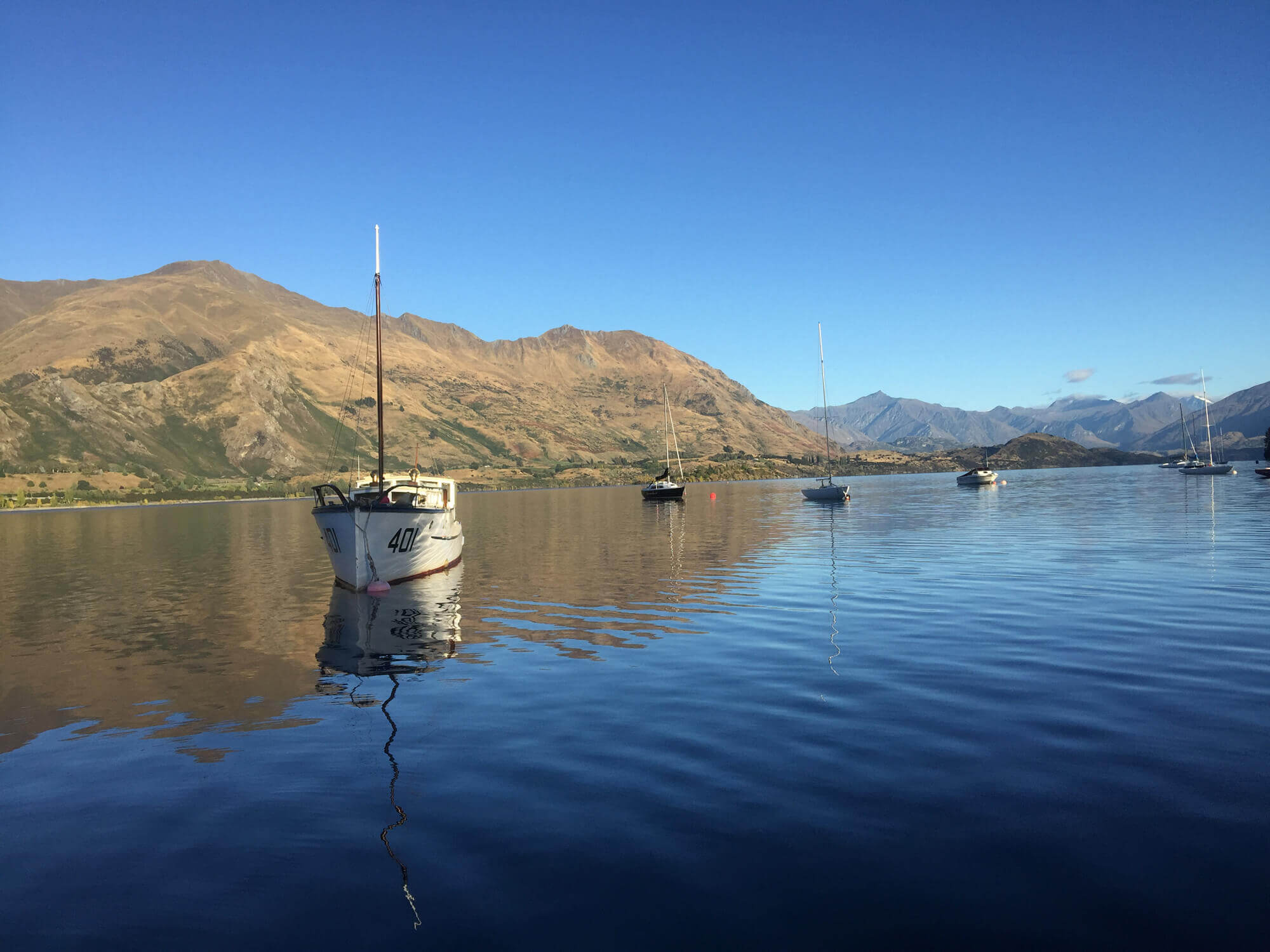 Central Resource Management - We undertake resource consent applications, environmental monitoring, feasibility studies and due diligence in the Wanaka & Queenstown region.Learn More