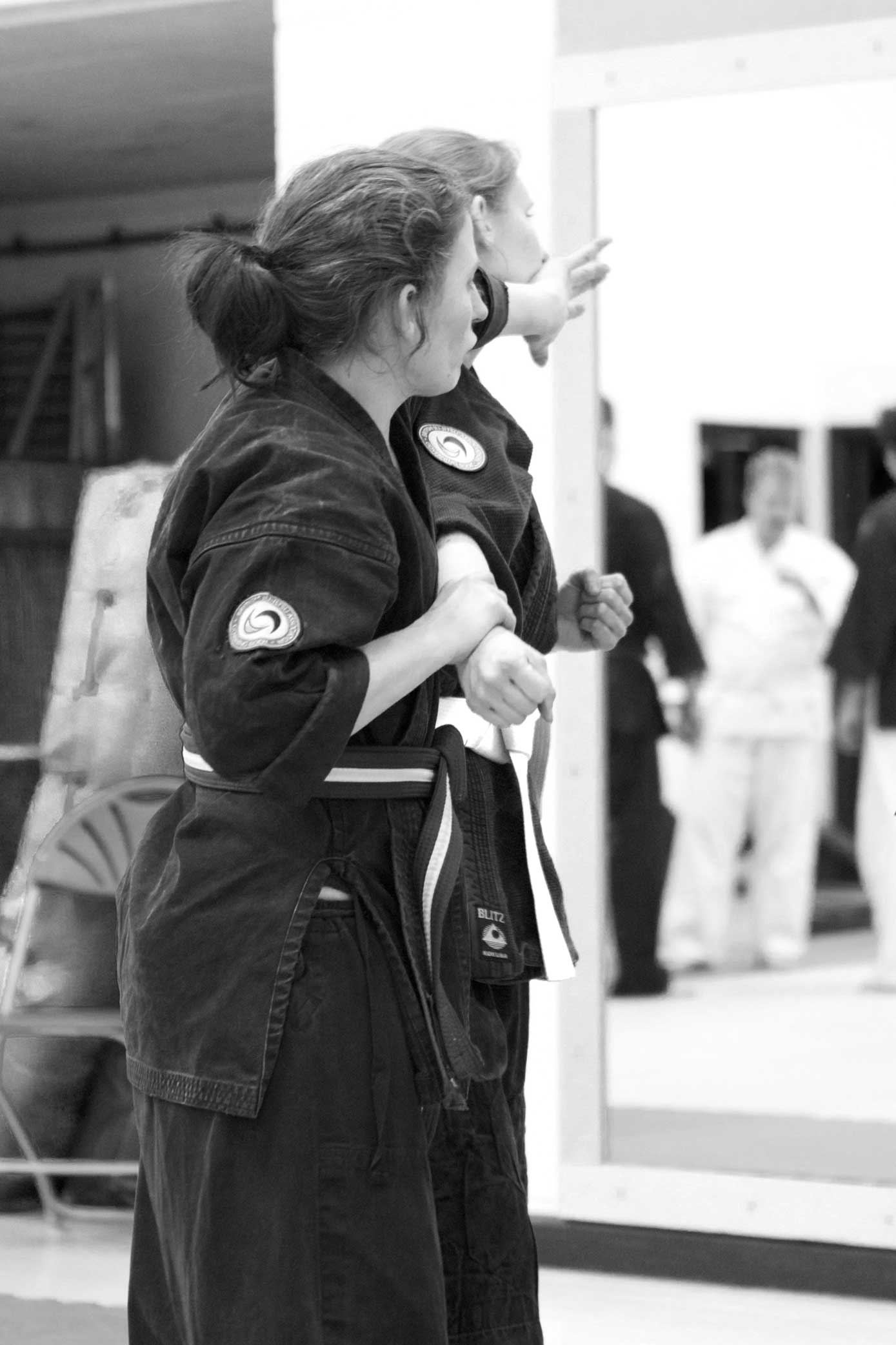 Female instructors - Some of our most senior students and assistant instructors are female, enabling us to offer 1-1 female tuition.