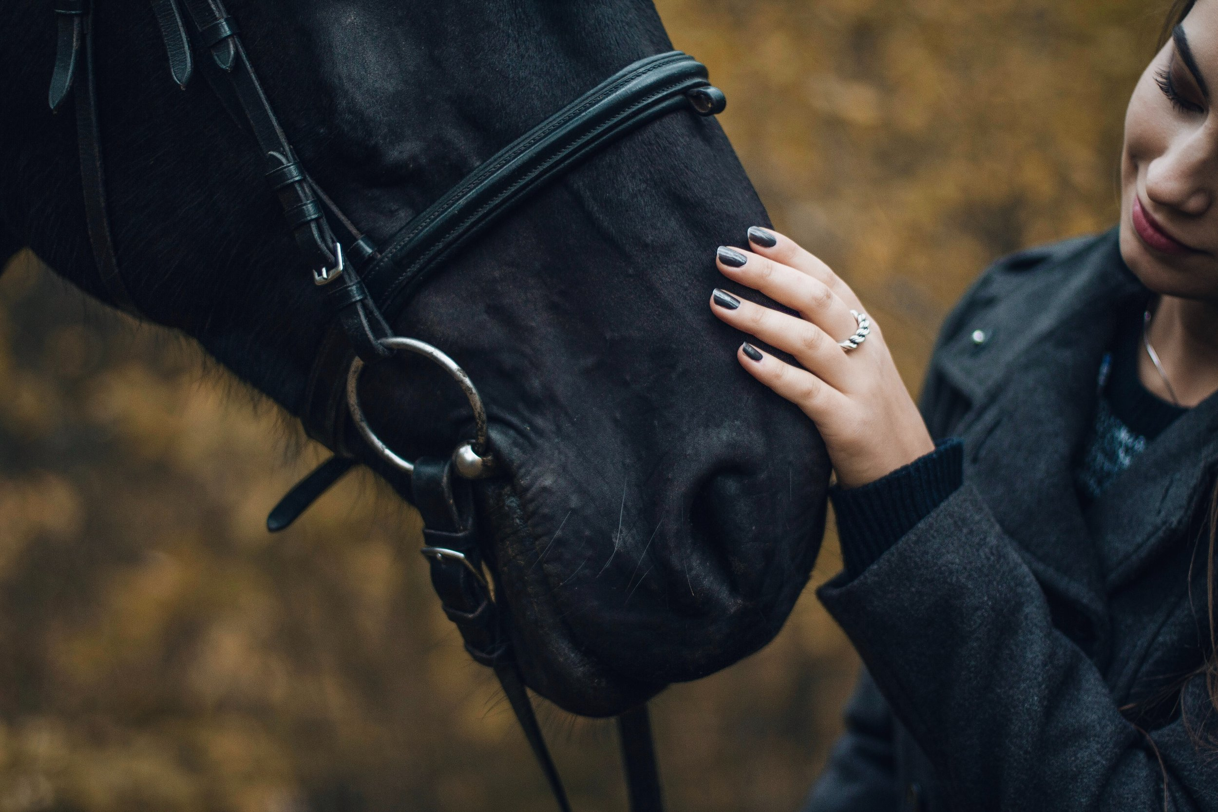 Stress-free woman rubs horse as part of therapy.