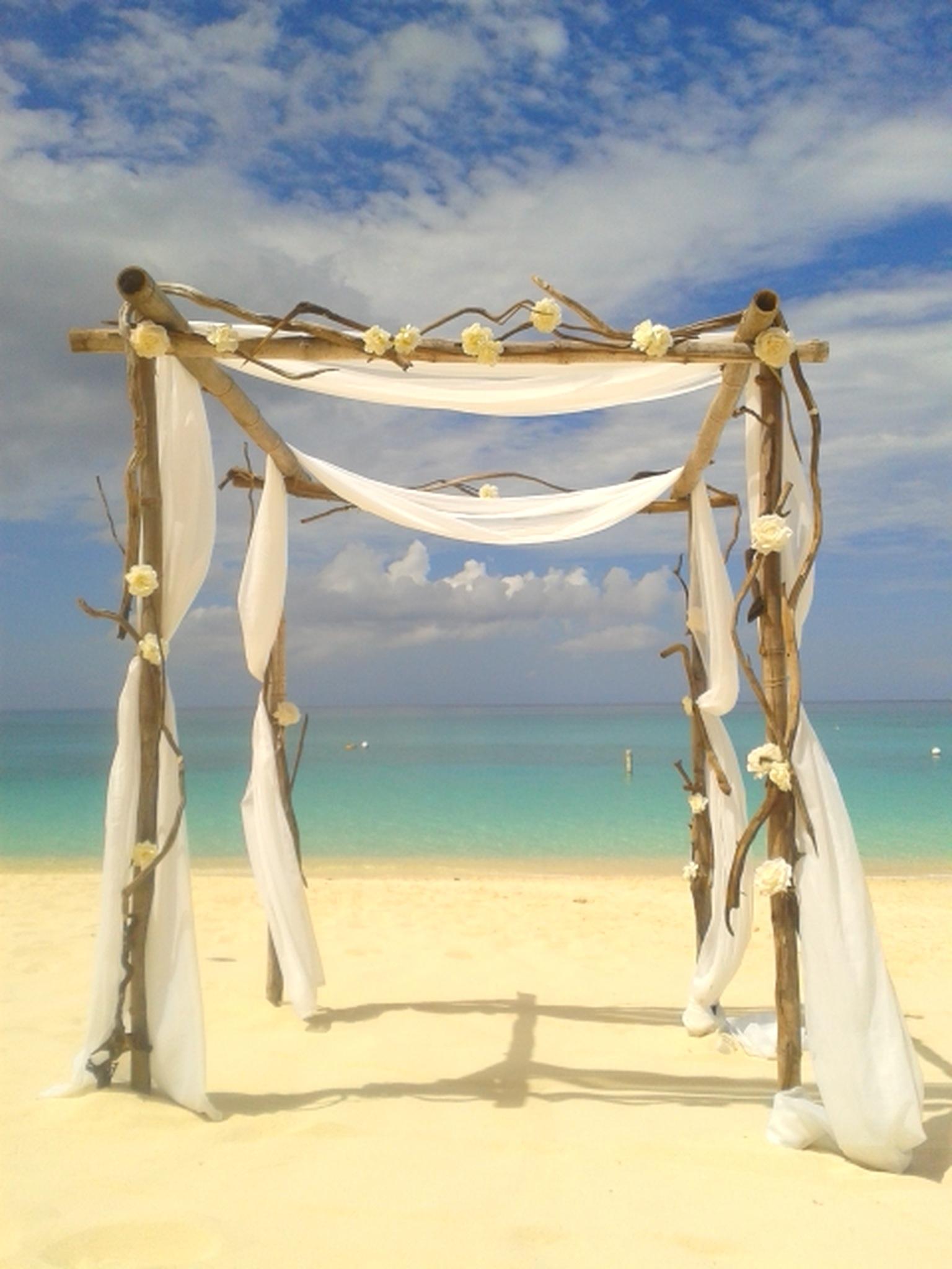 Wedding-ceremony-driftwood-canopy.jpg