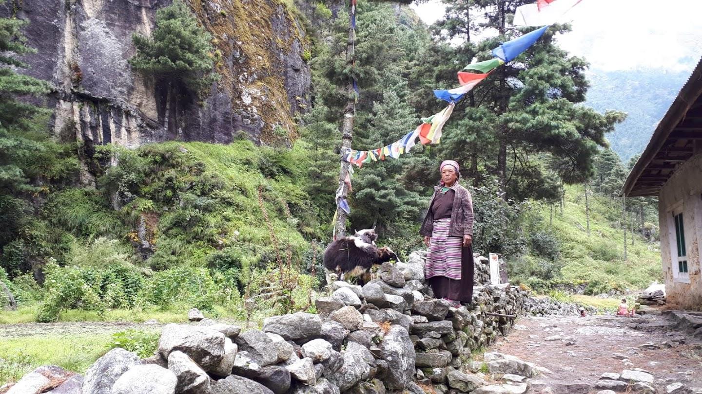 Nepal Lady  (1).jpg