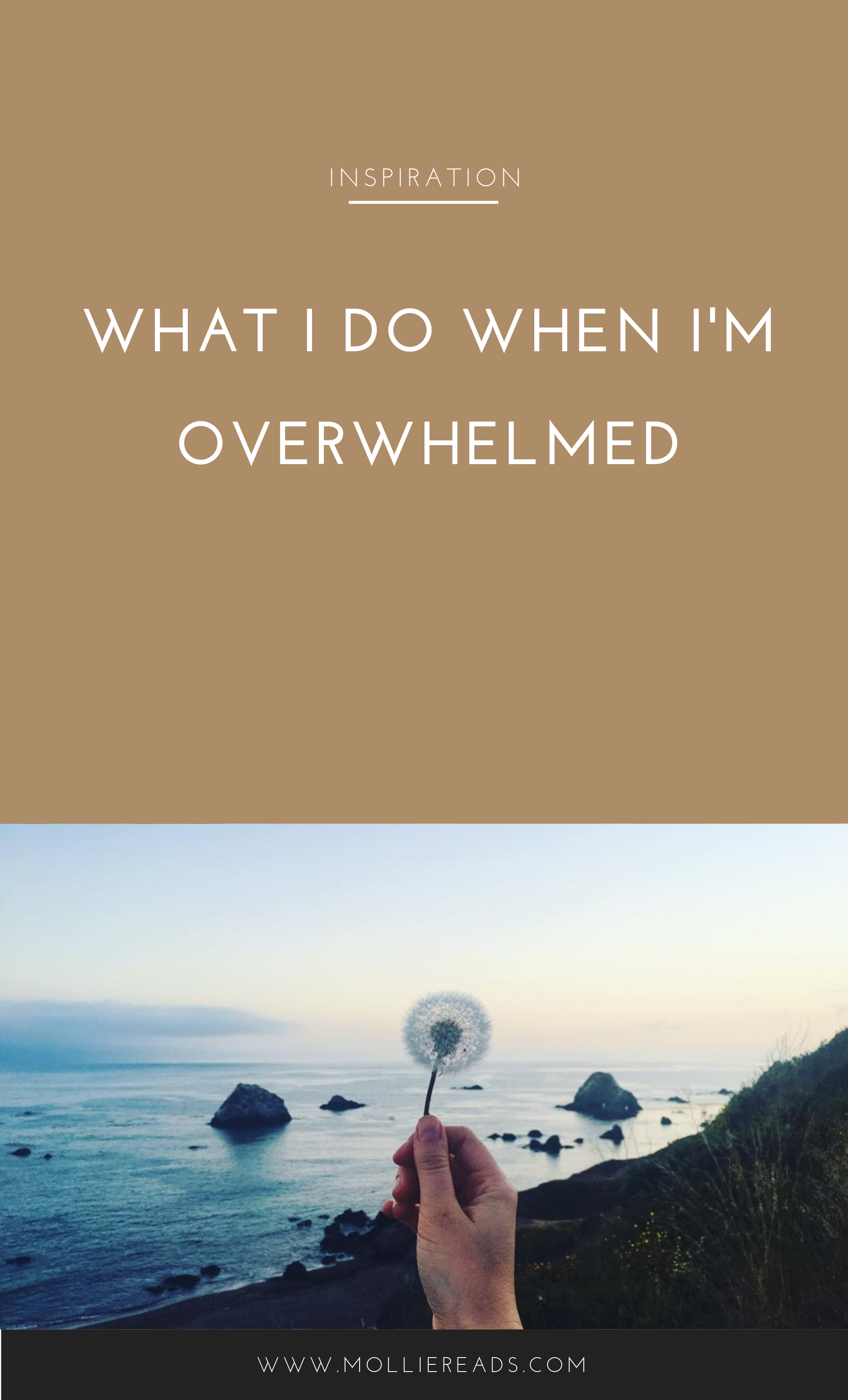 WhenImOverwhelmed.png