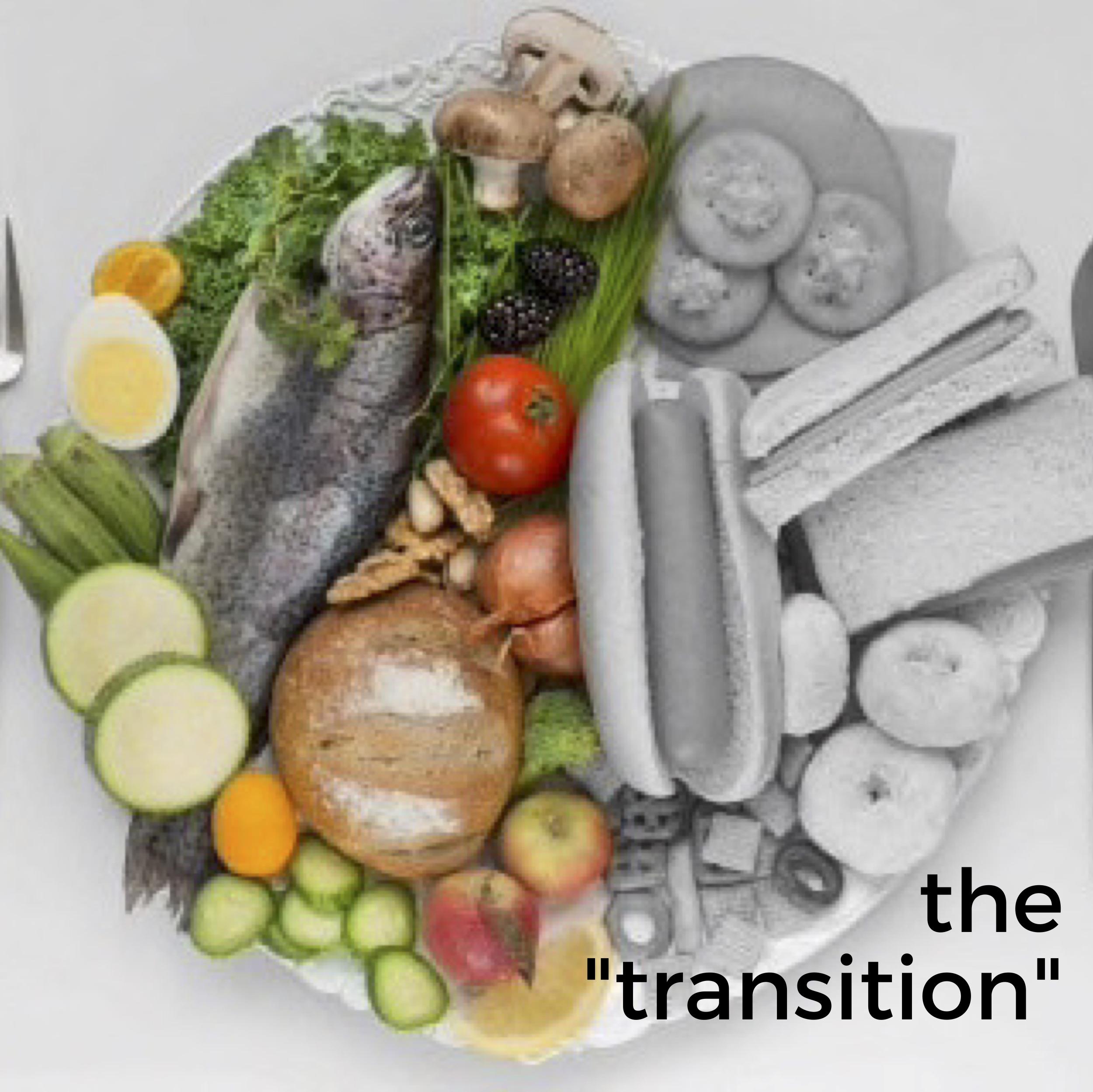 the transition.jpg