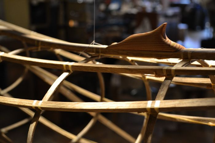 Wood Sculpture INspired by Life in the pacific Northwest - Whales, raptors, and more. Crafted using traditional boatbuilding techniques from sustainably-harvested wood and sinew. Learn more about my wood sculpture