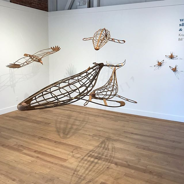 Another shot from the show @northwindarts , up through the end of the month. Need ideas for weekend plans? Why not head up to Port Townsend, hang out for the weekend and see this show for yourself! (Seems like a good plan to me. I may be biased) #whale #humpback #turkeyvulture #orca #sculpture #art #artgallery #bentwood #steambending #porttownsend #olympicpeninsula #salishsea #pugetsound #pnw #pnwonderland #optoutside #woodwork #woodworking #boatbuilding