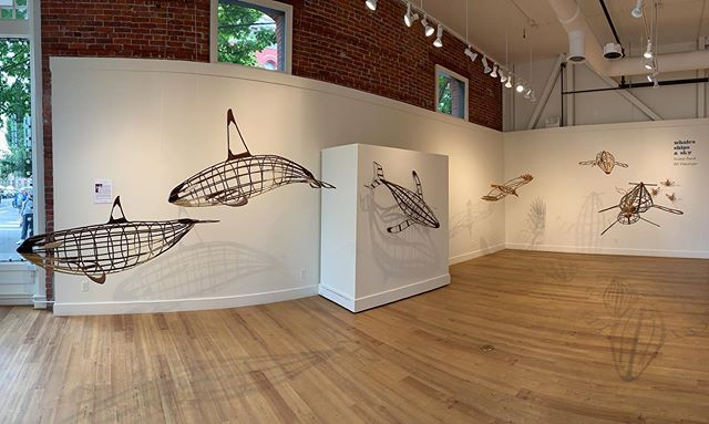 This is the last weekend to see  the show @northwindarts with my work along with that of @kbrevik_whalefall . Looks like it's going to be a lovely weekend on the Olympic Peninsula. Why not visit the show and then head out for a hike in Olympic National Park? Sounds like a good weekend plan to me! #orca #killerwhale #humpbackwhale #whale #turkeyvulture #redtailedhawk #barnswallow #sculpture #art #artgallery #interiordesign #decor #seattleinteriordesign #portlandinteriordesign #bentwood #steambending #woodwork #woodworking #porttownsend #seattle #porttownsend #washingtonstate #pnw #pnwonderland #optoutside #olympicpeninsula #woodenboat #boatbuilding