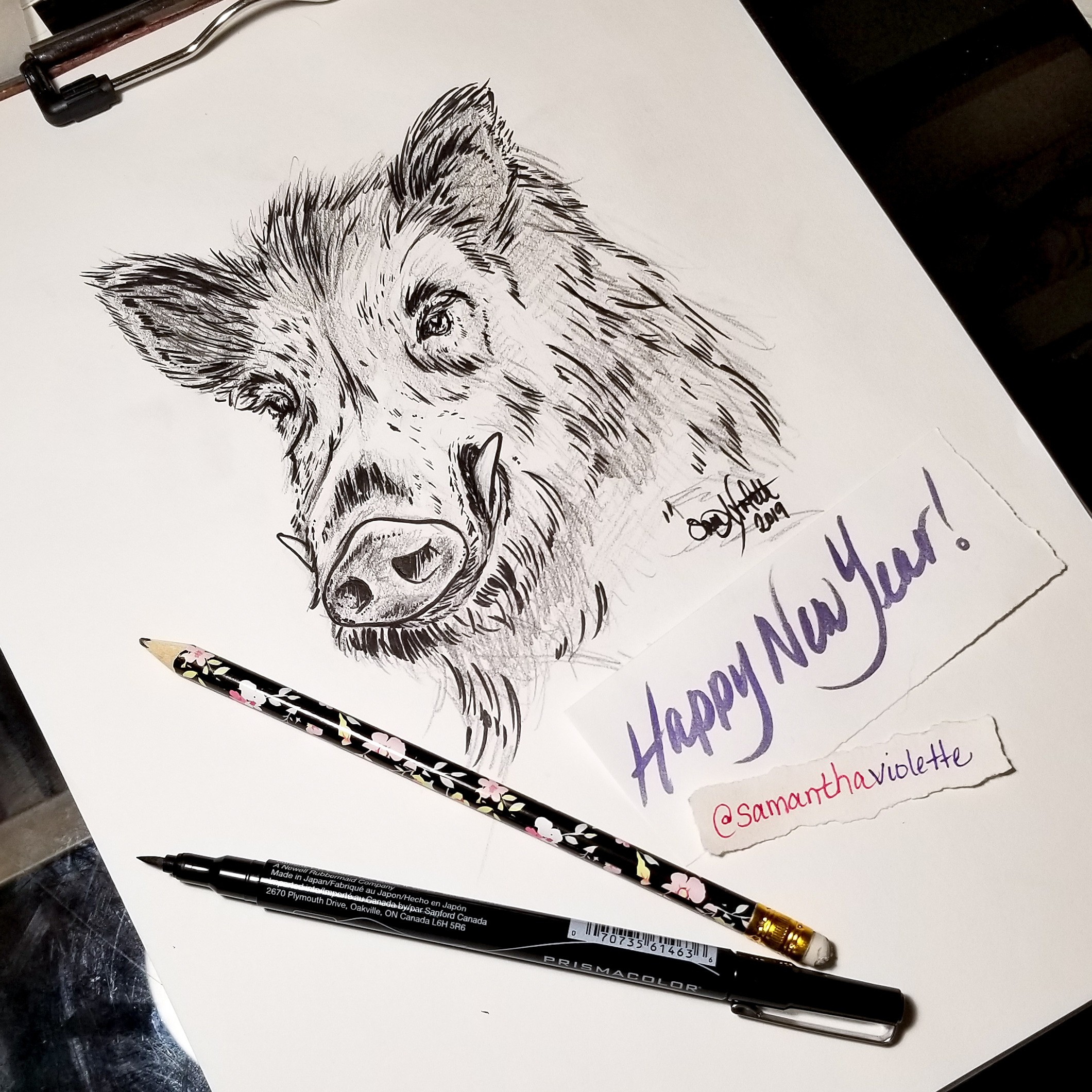 2019 - Year of the Boar: A sketched created with caffeine and stubborn moxie!