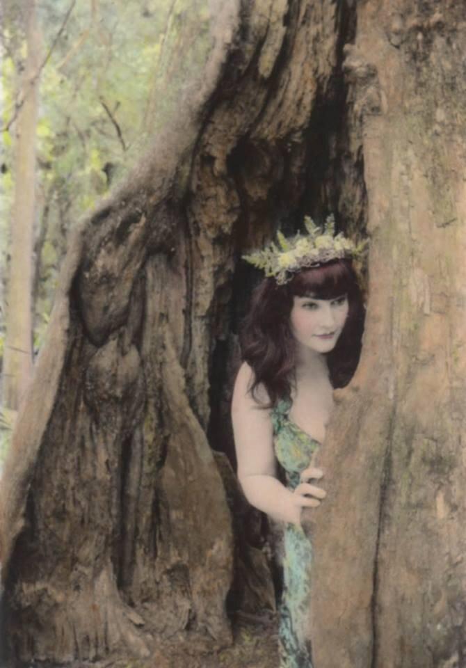 Skyler lurking in a cypress swamp, 2017. Hand-colored silver gelatin print.