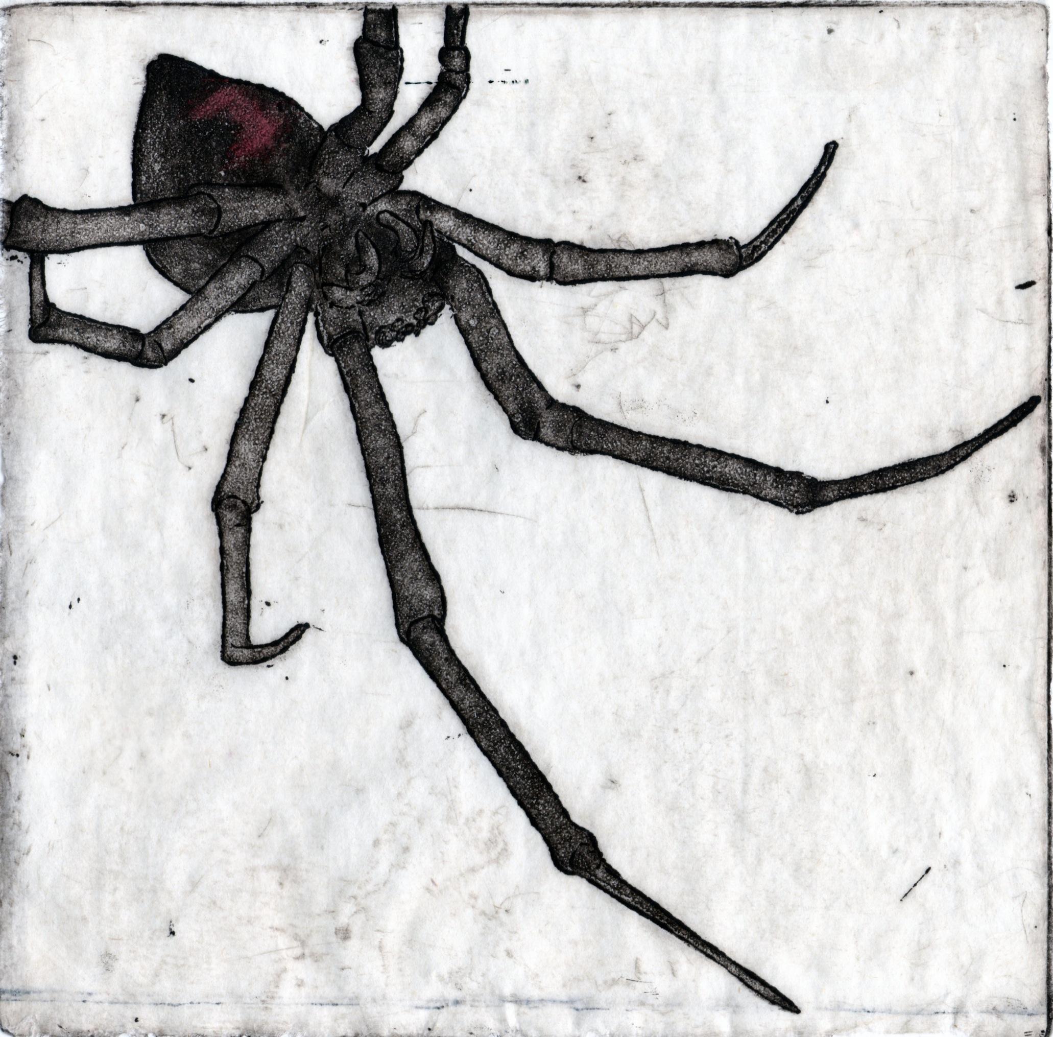 Pest006.jpg