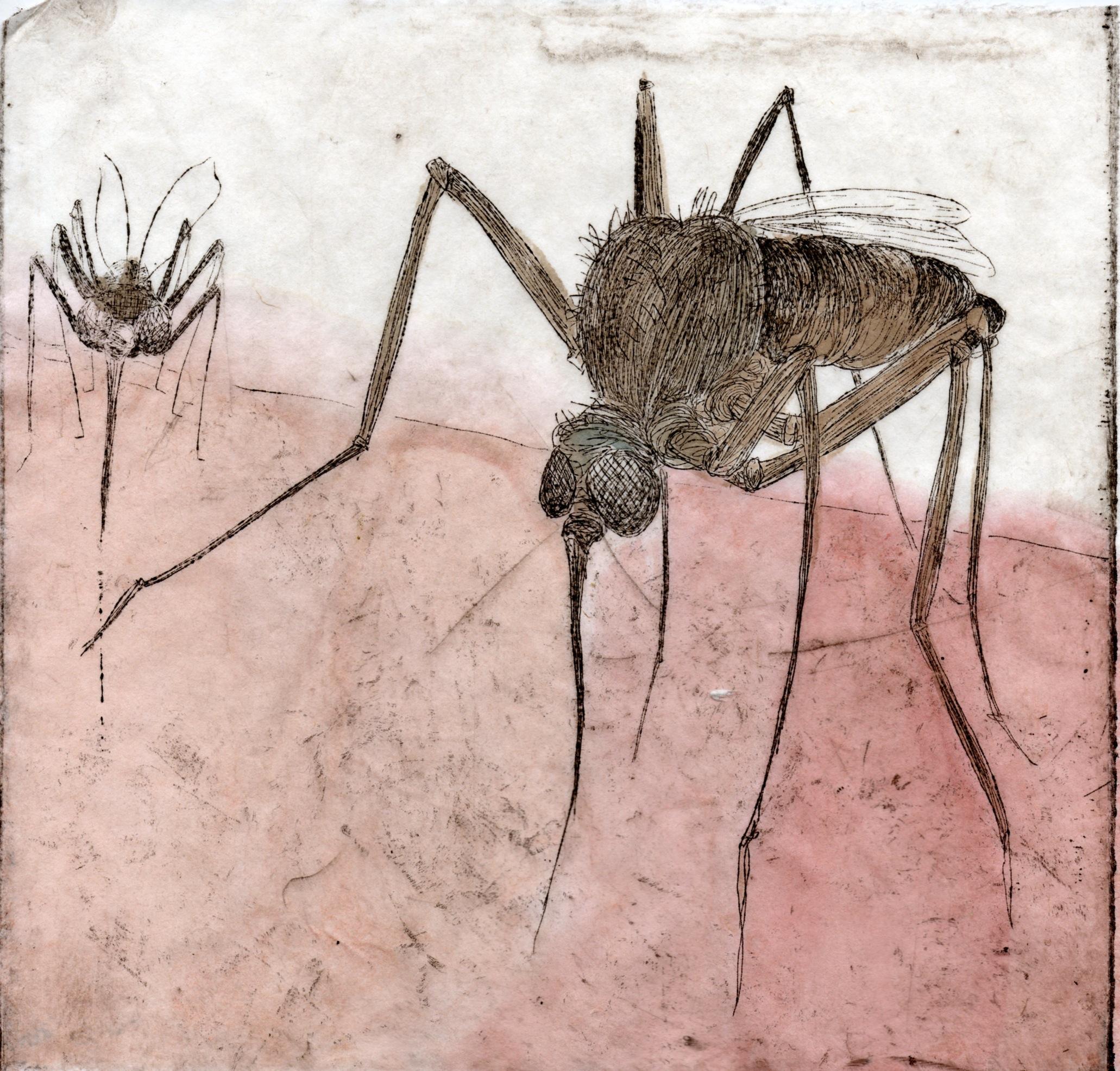 Pest014.jpg