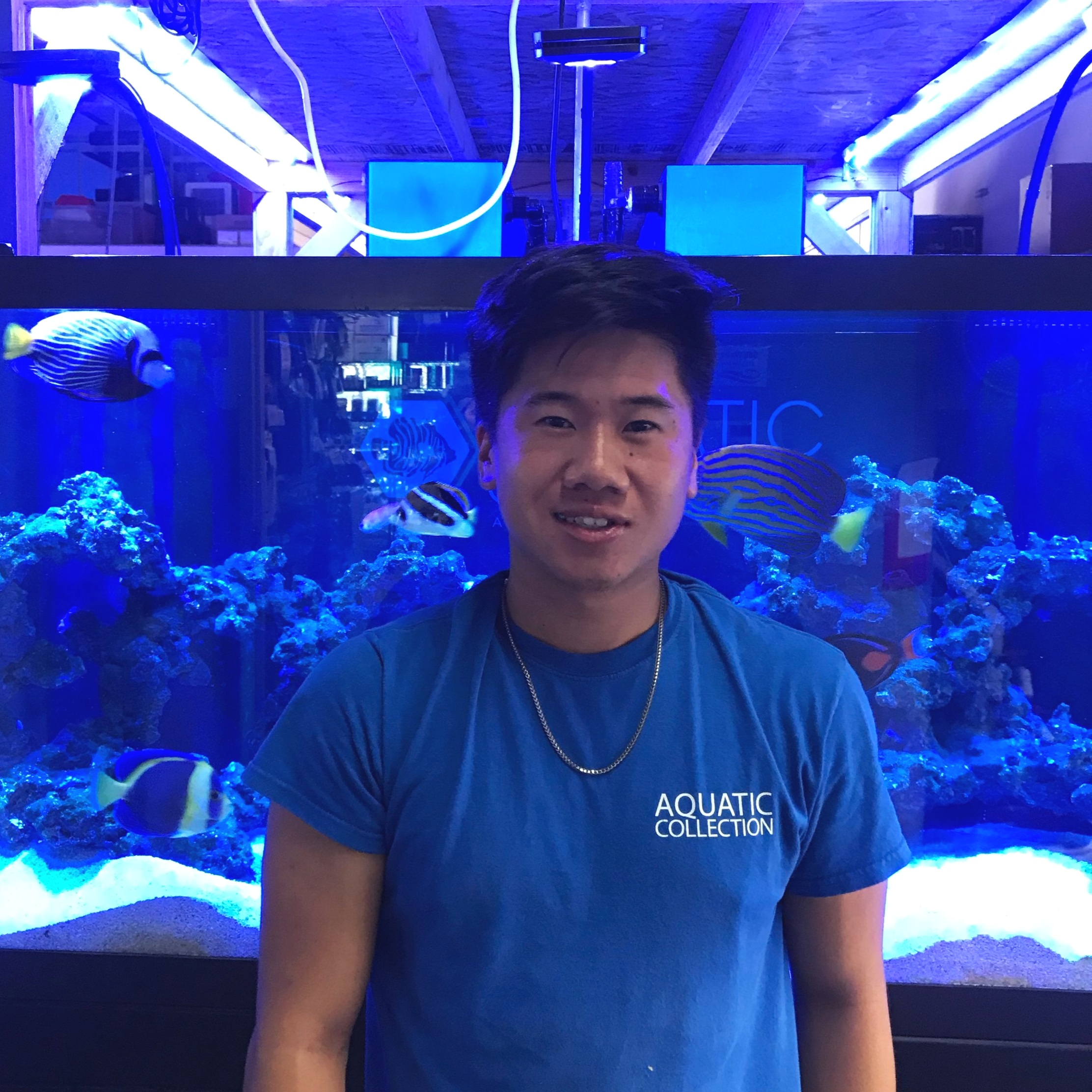 Justin - Justin has been volunteering at Aquatic Collection for about a year. He recently graduated from high school, enjoys playing basketball and volleyball, and he loves to work out. Justin just purchased his first aquarium and is enjoying learning about coral. His favorite fish is the Foxface and his favorite coral is the jawbreaker mushroom. He likes to watch the show Silicon Valley and his favorite movie is Lilo and Stitch. Say