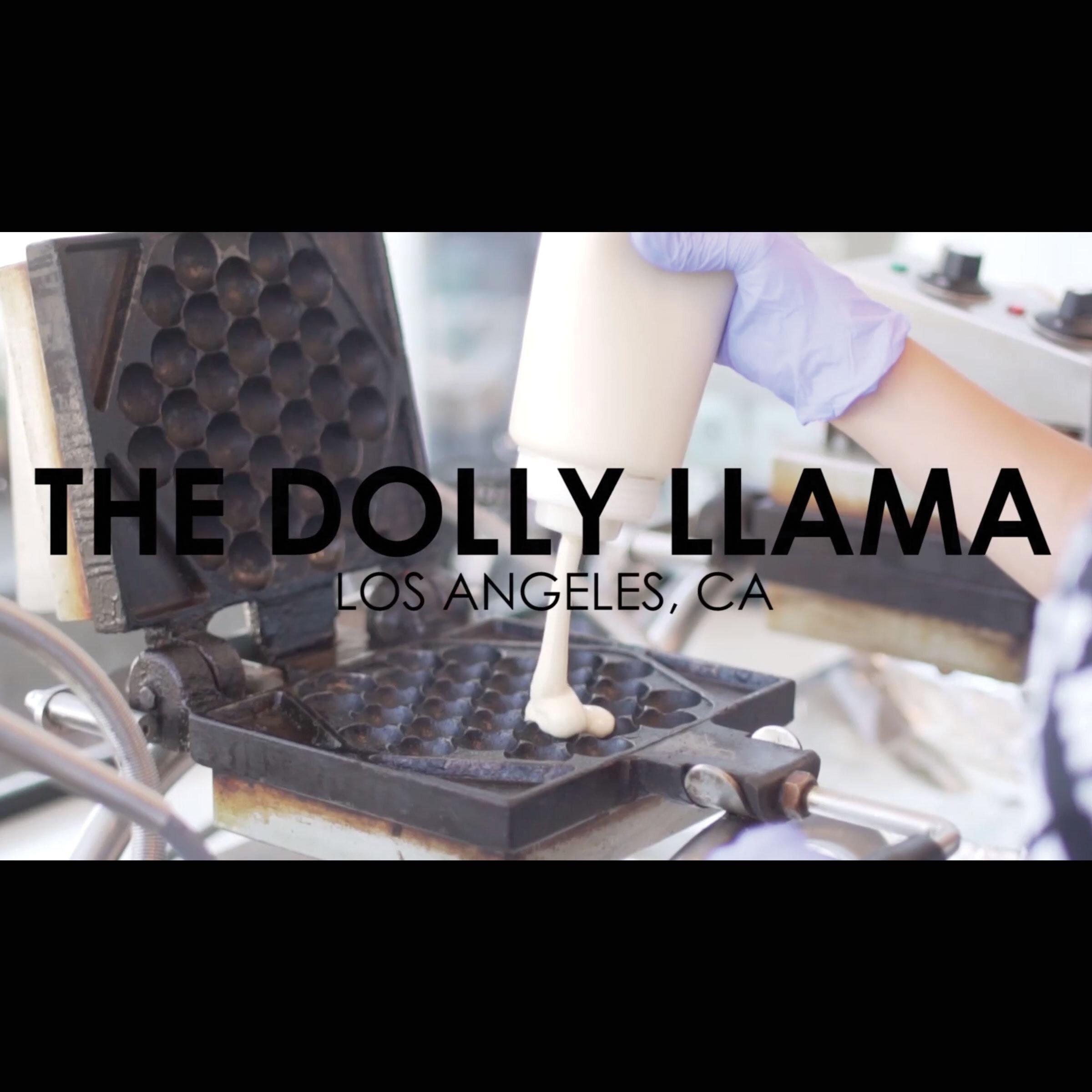 CASE. CC // 1005  THE DOLLY LAMA
