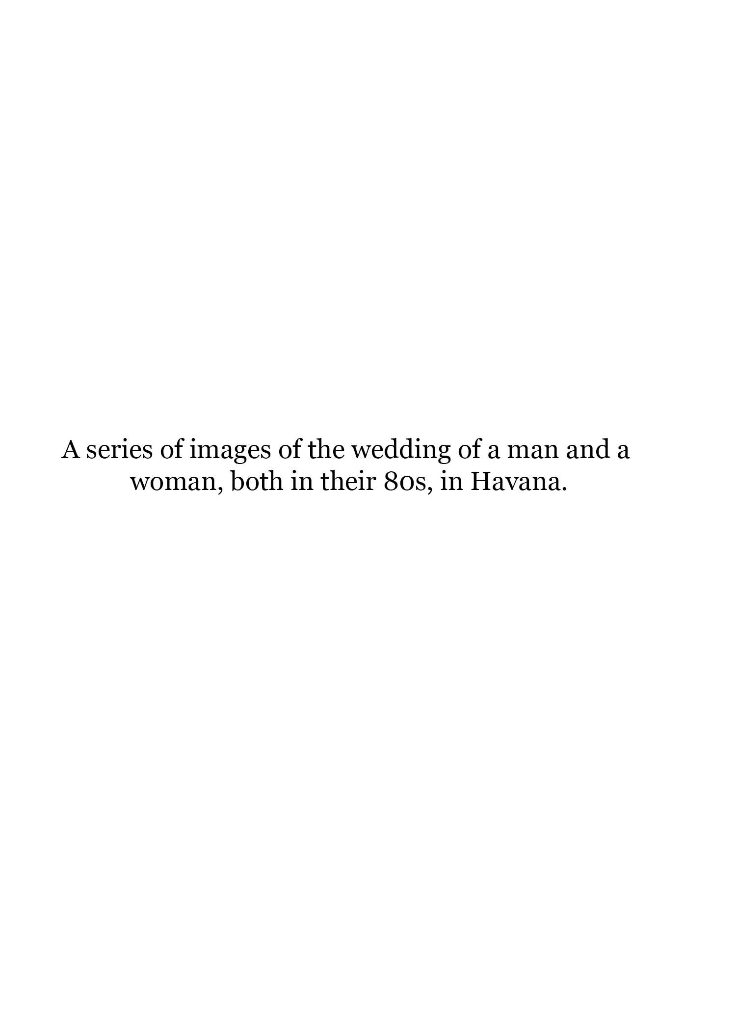 wedding description.jpg