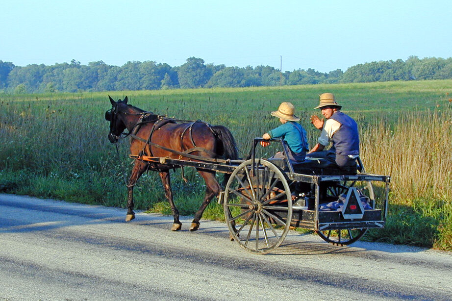 freeimages---jim-campbell---amish-drive-by-1524781.jpg