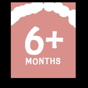6+months button