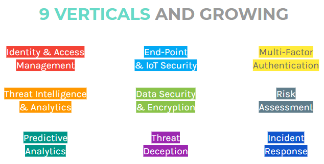 Cybersecurity verticals