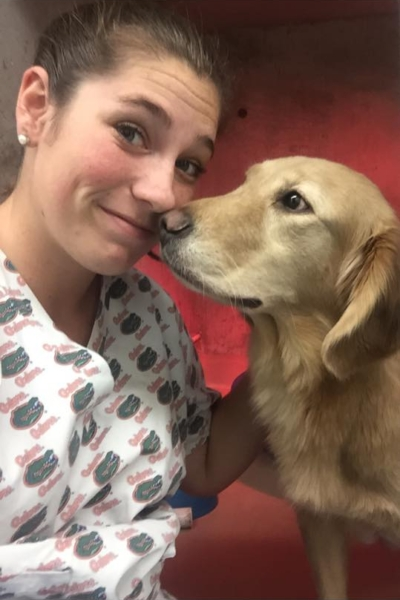 Looking for a Veterinary Internship? - Dr. Maxwell and Dr. Nuttall enjoy working with students in the veterinary field, so if that's you, contact Ark today and ask about possible internship opportunities that might be available.