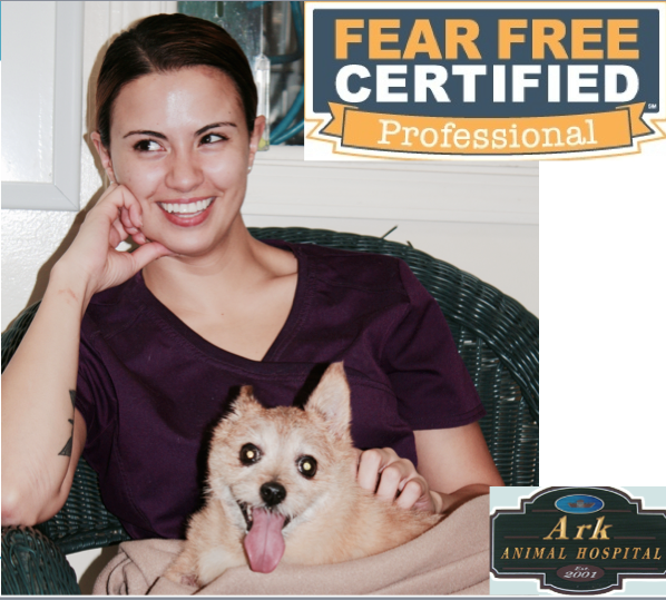 fear-free.png