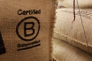 Caravela - Caravela is a certified B Corp coffee exporter which sources coffee from 2,100 smallholders in 8 Latin American countries. By connecting quality minded producers with socially focused roasters, Caravela is building long-term relationships to make an impact at origin.