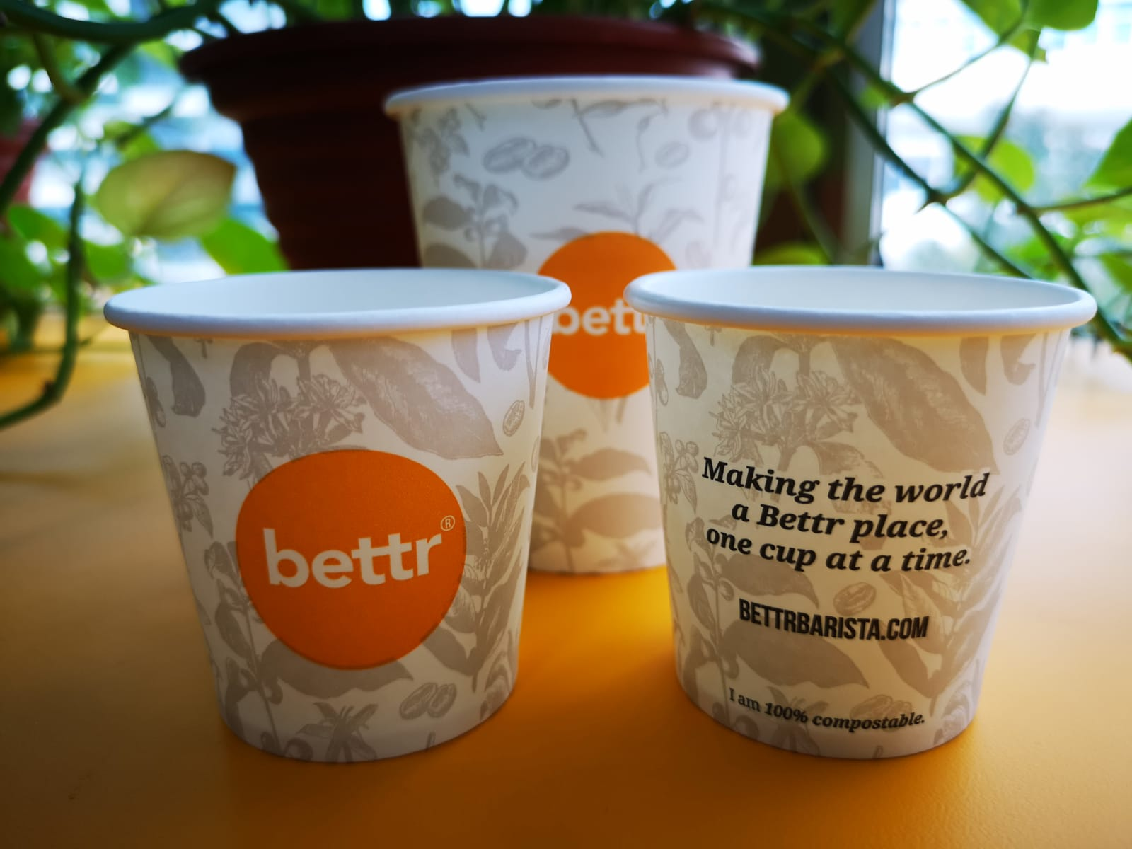 compostable-paper-cups-3.jpeg