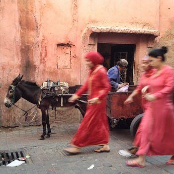 red-city-marrakech1.jpg