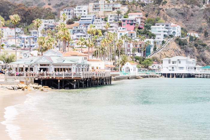 catalina-island-beach.jpg