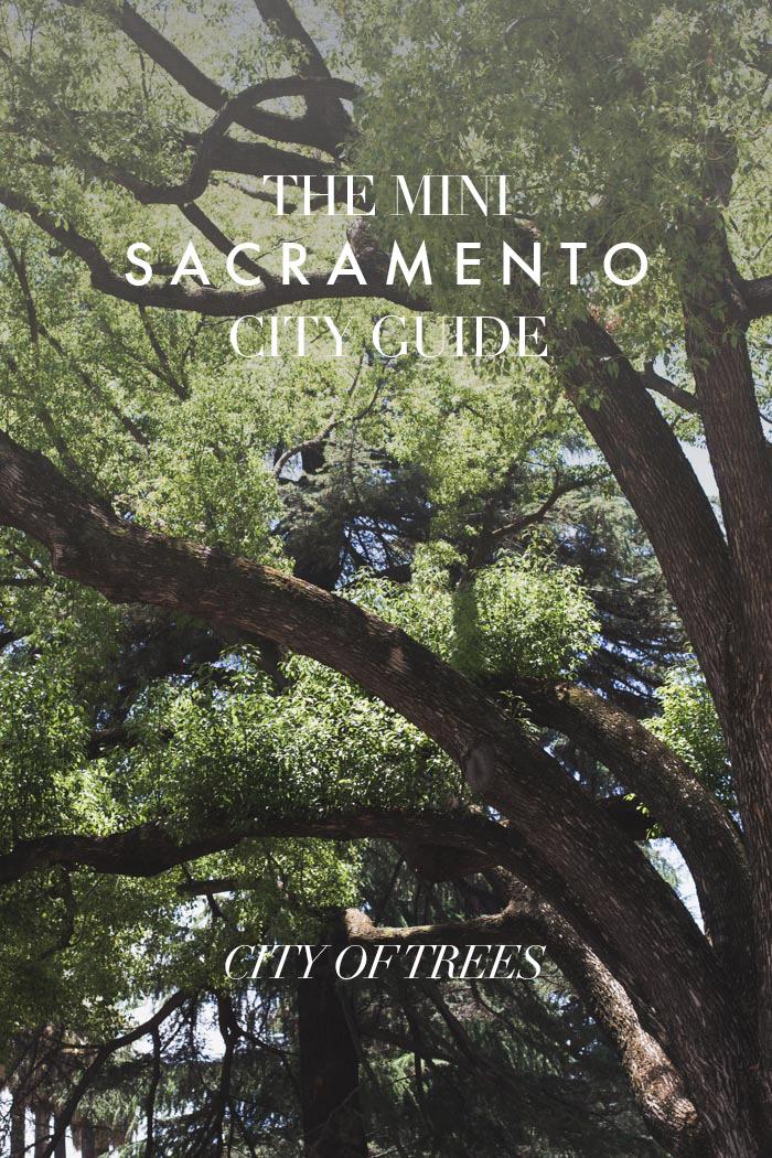 sacramento-city-guide-city-of-trees.jpg