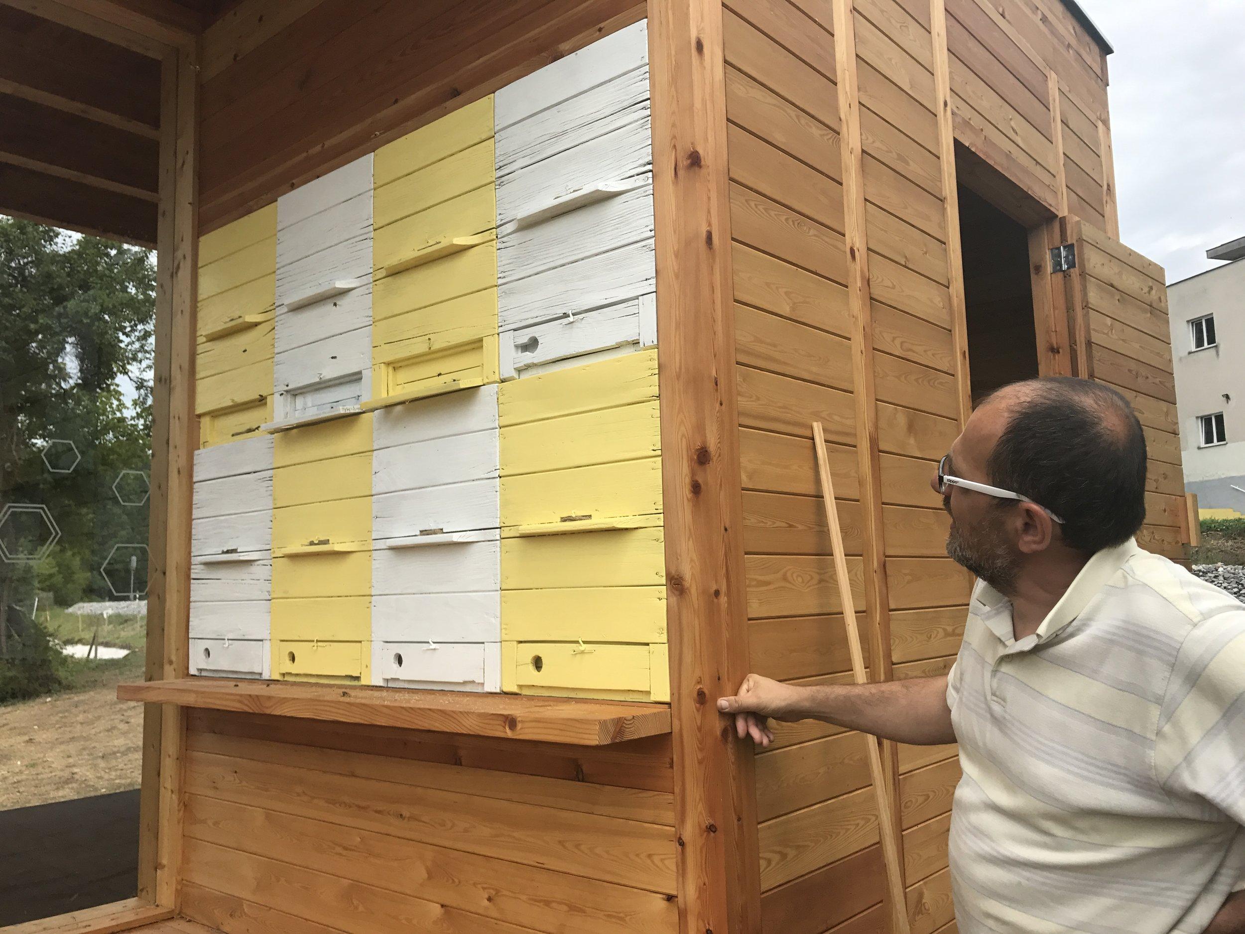 Dr. Janko Bozic checking his AZ hives