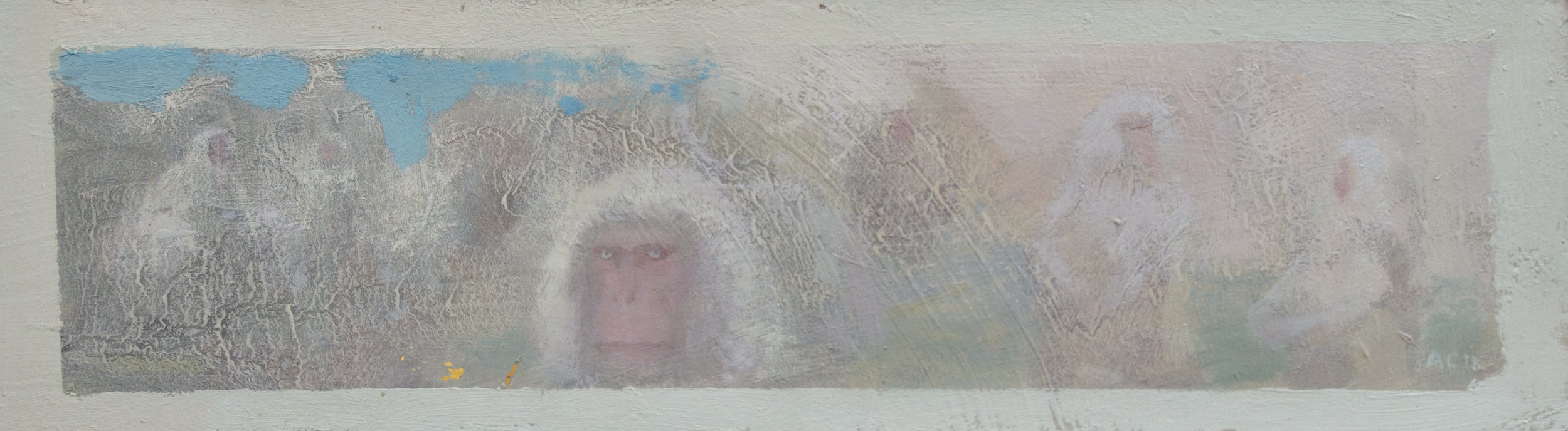 Copy of snow monkeys.jpg