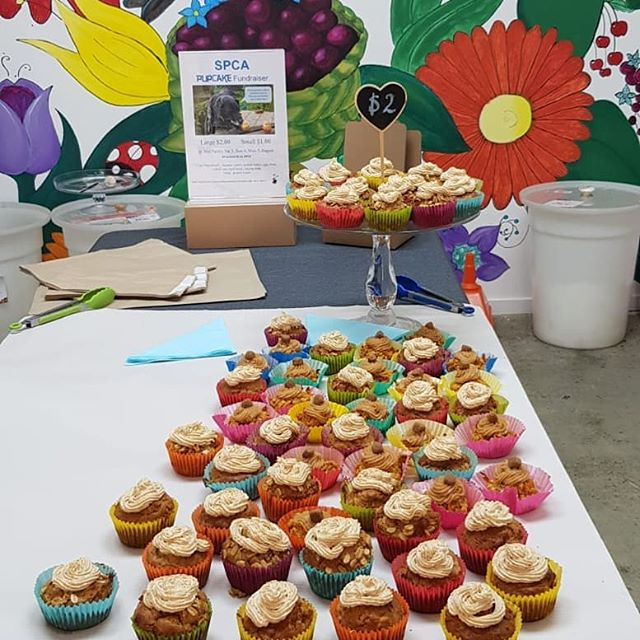 We are fundraising for SPCA's Cupcake Day. Come for a visit with your puppy and treat them and yourself to either a pupcake or cupcake on Sunday 4th August from 09:00-04:00 and Monday 5th Aug from 08:30-17:30 to show your support.  We are selling yummy pupcakes for $2 with all proceeds going back to SPCA. Cupcakes are also available for $2.50, with $1.50 per cupcake going back to SPCA. Vegan cupcakes are also avaliable!  If you cannot make it down please donate on our fundrasing page for SPCA:  https://cupcakeday2019.everydayhero.com/nz/thepantry
