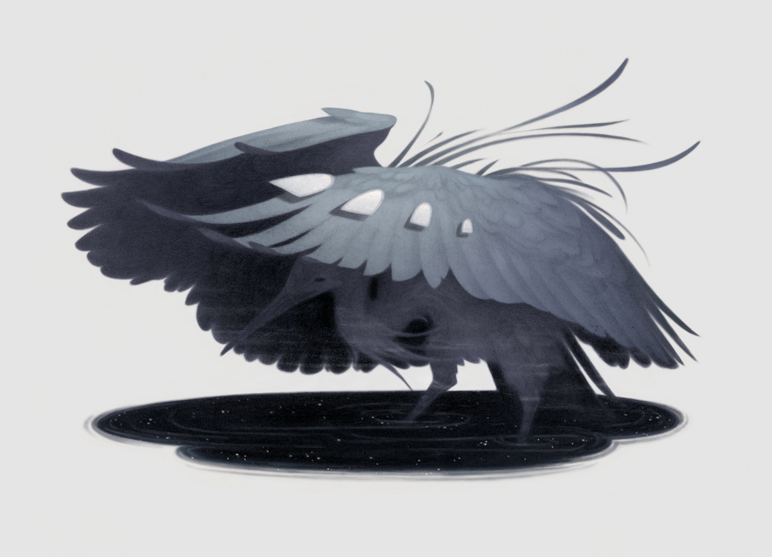 Black Heron / Light Grey Art Lab