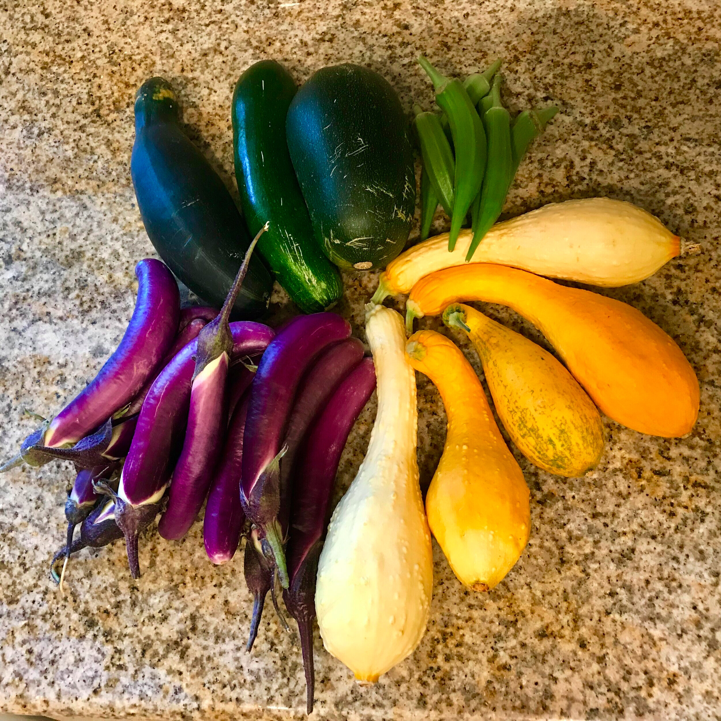 Looks like dinner is gonna be something with squash, eggplant, and okra…