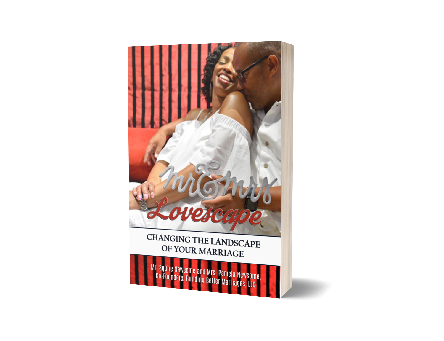 Promo Book Cover.png