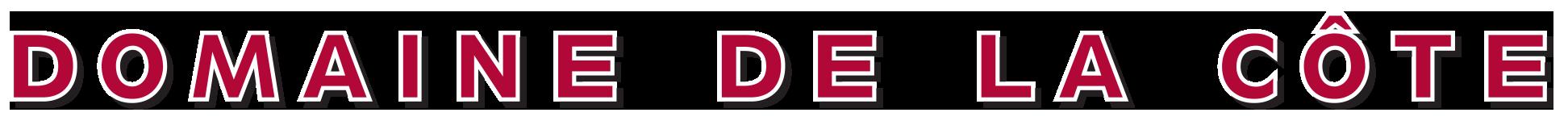 DDLC_logo.png
