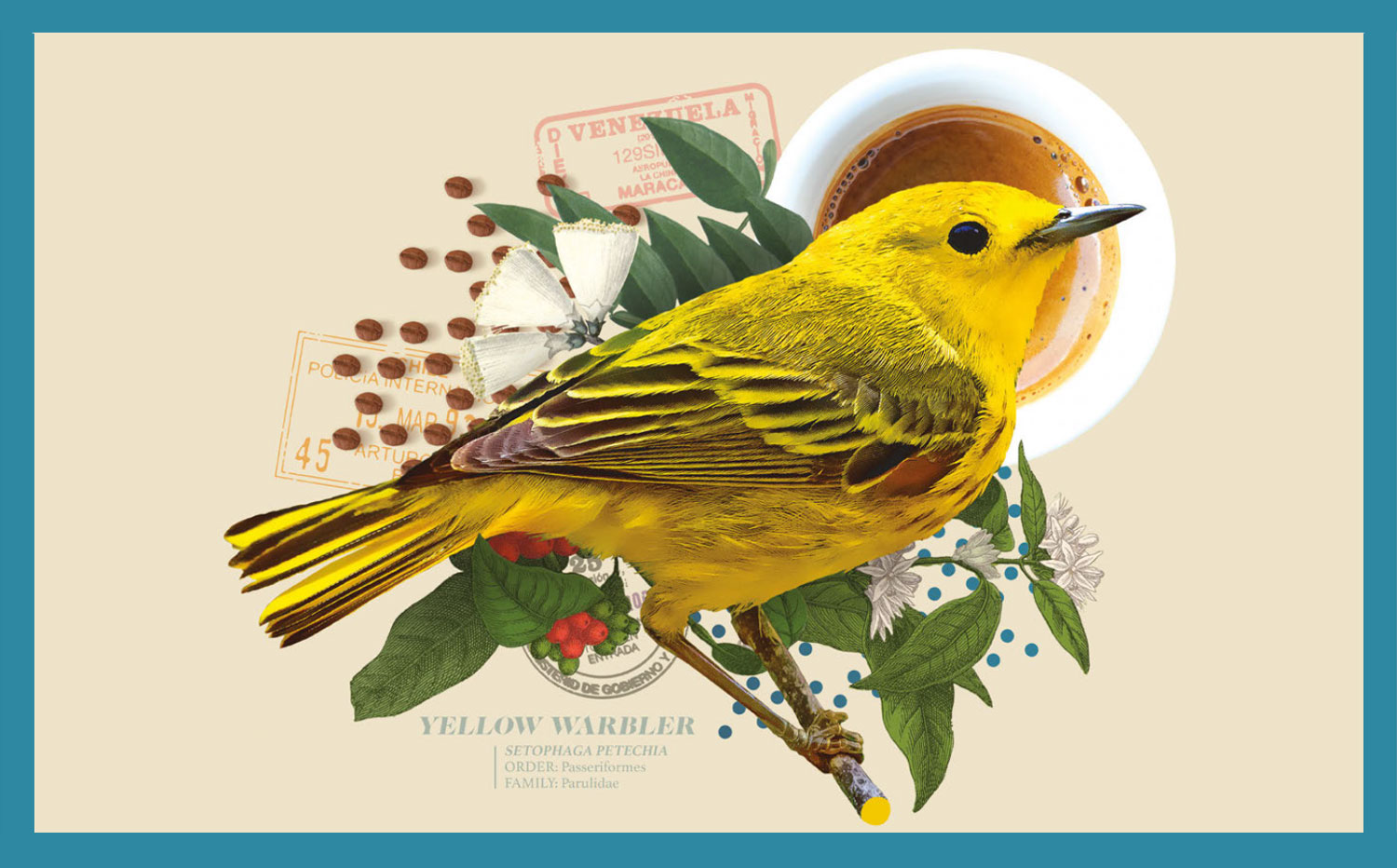 5. Drink Coffee That's Good for Birds