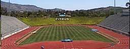citrus-stadium.jpg
