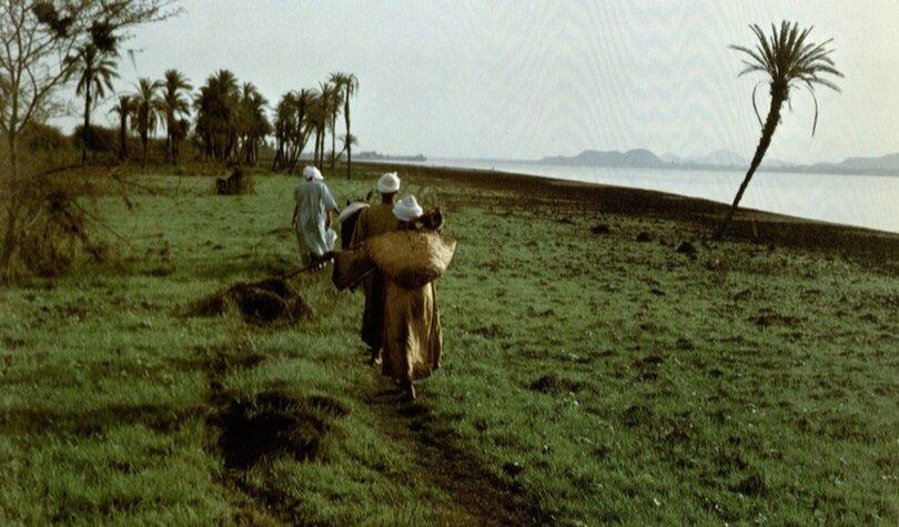 Nubian men farming along the Nile from Robert Fernea's  Nubians in Egypt: A Peaceful People