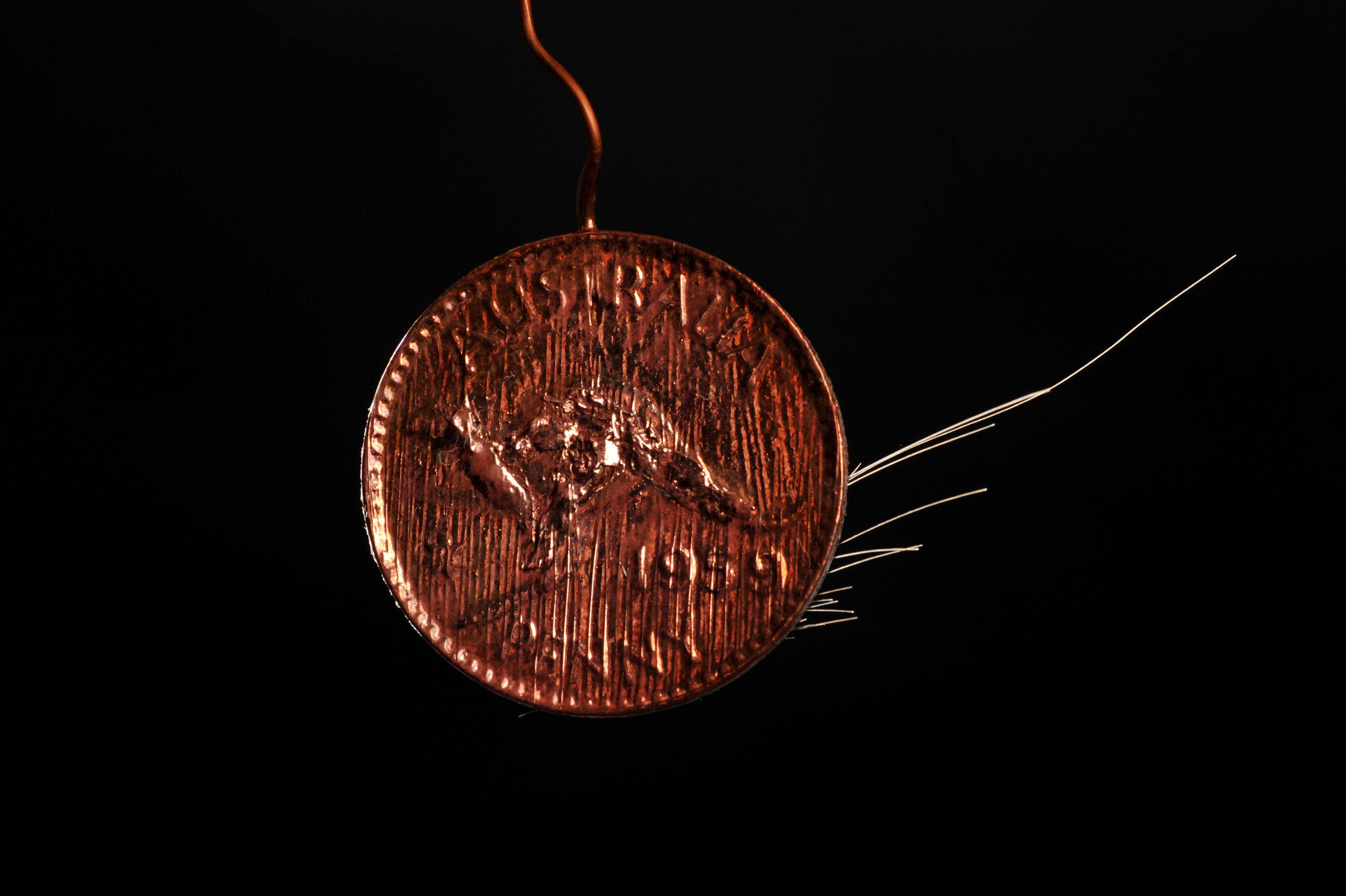 11. Copper Penny, 2016. Dimensions 5 cm x 7 cm_ copper penny, artist's hair. Image Nu Image (2).JPG